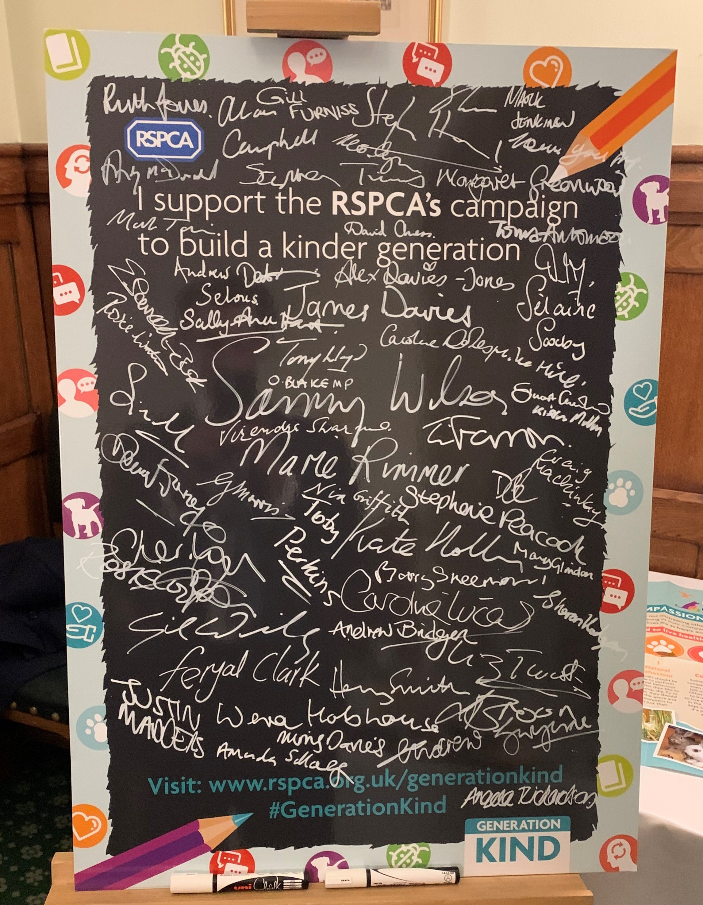MPs pledge board