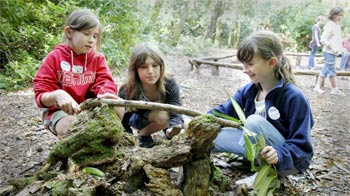 Girls building animal homes at Mallydams Wood © RSPCA